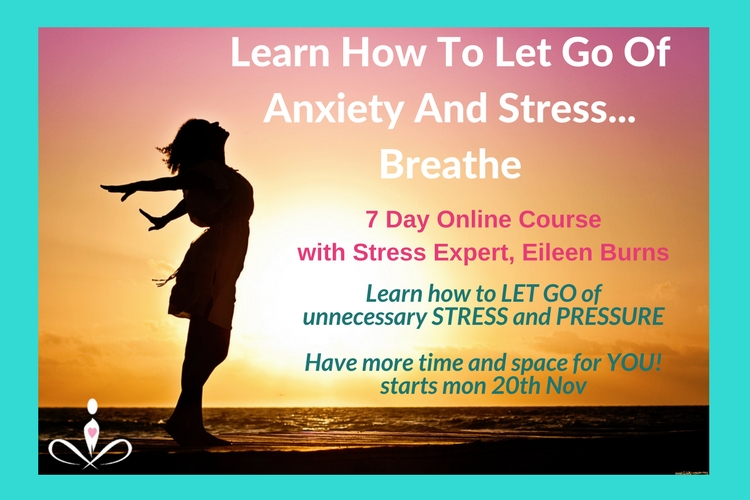 FREE 7 Day Stress & Anxiety Course