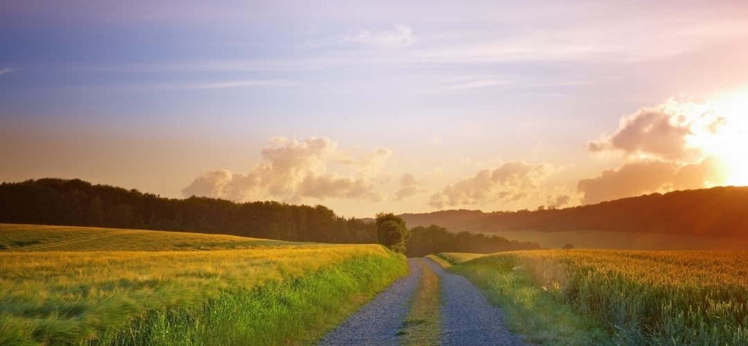 Life Lessons From The Road Less Travelled